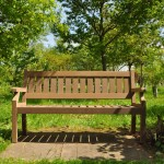 One new bench